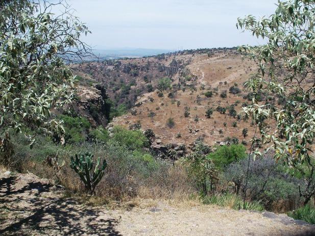 desert-landscape-349786_1920