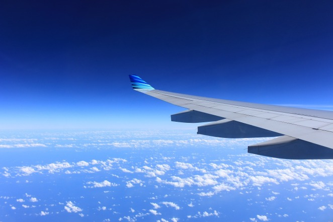 wing-221526_1280(2)